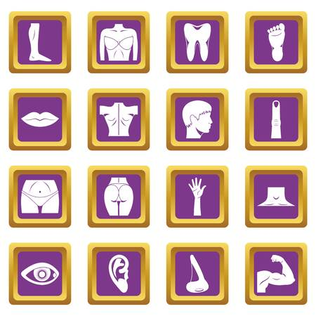 Body parts icons set in purple color isolated illustration for web and any design