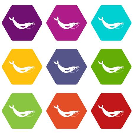 baleen whale: Whale icon set many color hexahedron isolated on white vector illustration