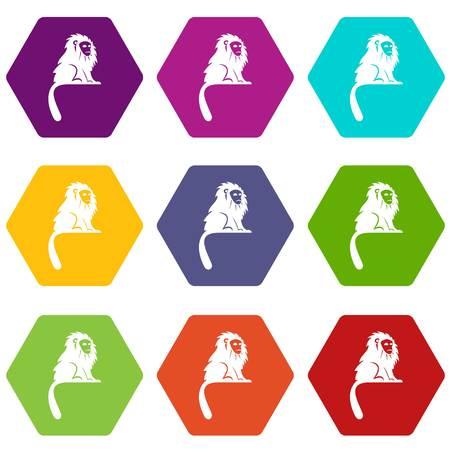 Hairy monkey icon set many color hexahedron isolated on white vector illustration Illustration