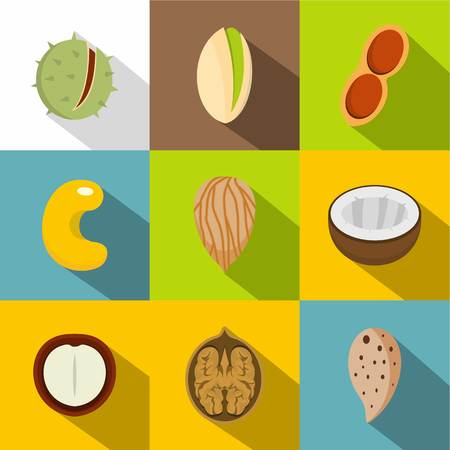 Various kinds of nuts icons set. Flat set of 9 various kinds of nuts vector icons for web with long shadow Illustration