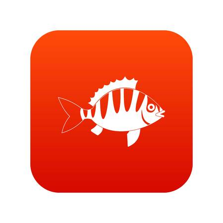 perca: Perch icon digital red for any design isolated on white vector illustration Illustration