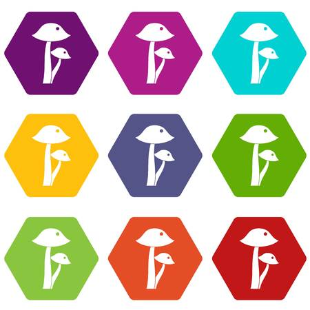 amanita: Honey fungus icon set color hexahedron Illustration