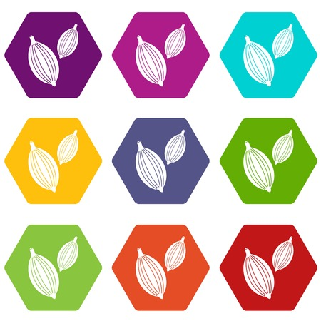 Cardamom pods icon set color hexahedron Stock Vector - 84582277