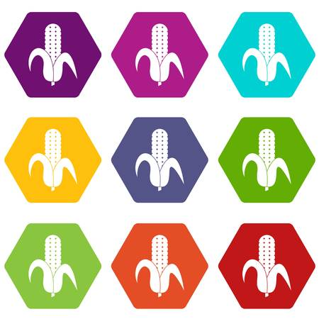 Corncob icon set many color hexahedron isolated on white vector illustration