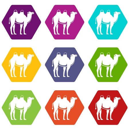 Camel icon set many color hexahedron isolated on white vector illustration Illustration