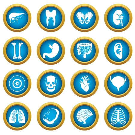 Human organs icons blue circle set isolated on white for digital marketing Illustration
