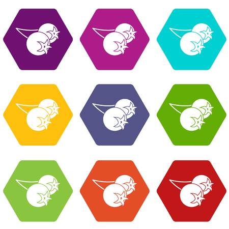 Chokeberry or aronia berry icon set color hexahedron Illustration