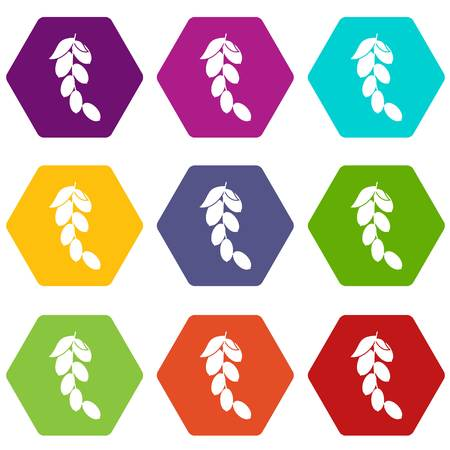 Branch of cornel or dogwood berries icon set color hexahedron
