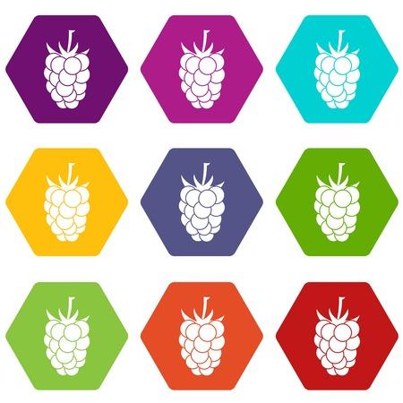 dewberry: Blackberry fruit icon set color hexahedron