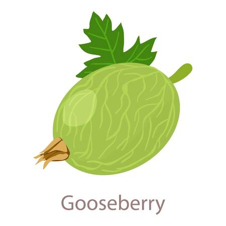 Gooseberry icon. Isometric illustration of gooseberry vector icon for web