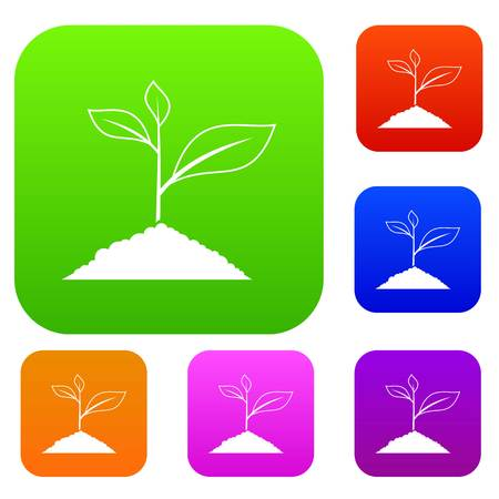 Growing plant set icon in different colors isolated vector illustration. Premium collection