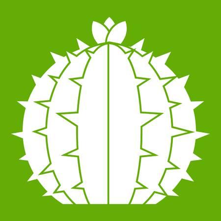 Lophophora cactus icon green