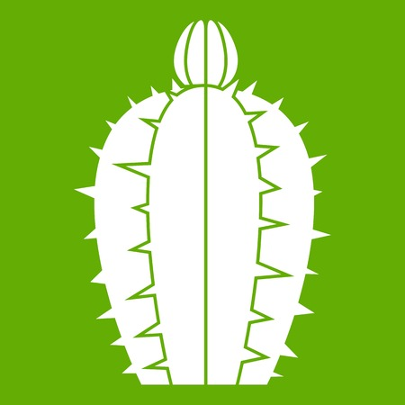 Blooming cactus icon green
