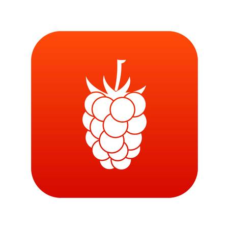 dewberry: Blackberry fruit icon digital red for any design isolated on white vector illustration