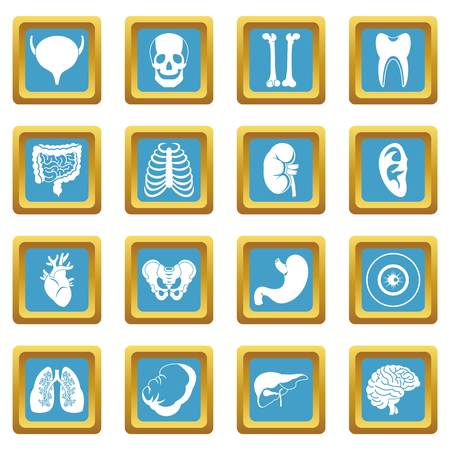 Human organs icons azure Illustration