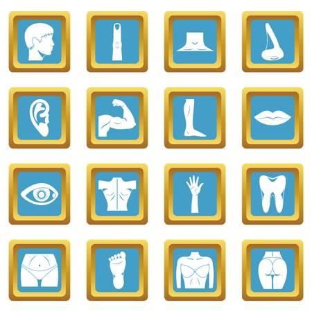 Body parts icons azure