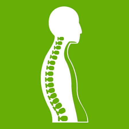 Human spine icon white isolated on green background. Vector illustration