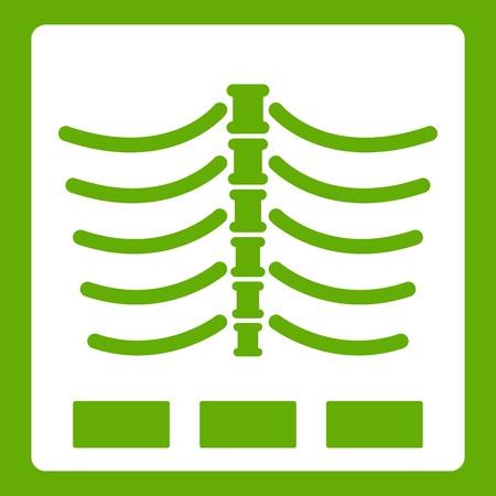 X ray photo icon white isolated on green background. Vector illustration Illustration