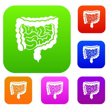 Intestines set icon in different colors isolated vector illustration. Premium collection