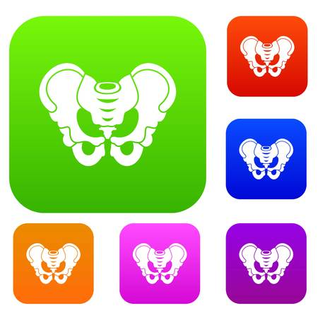 Pelvis set icon in different colors isolated vector illustration. Premium collection