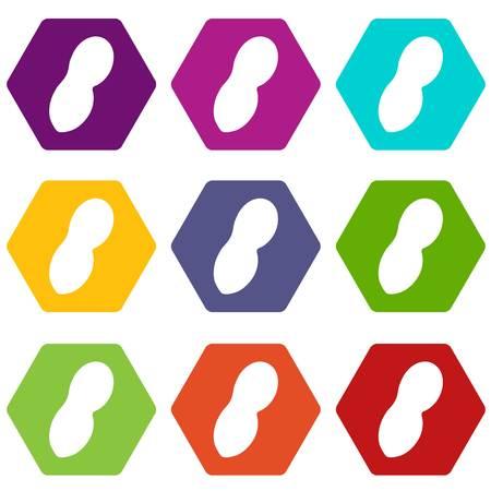 Peanut icon set color hexahedron Illustration