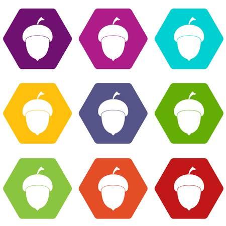 Acorn icon set color hexahedron