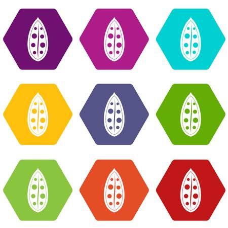 Cocoa pod icon set color hexahedron Illustration
