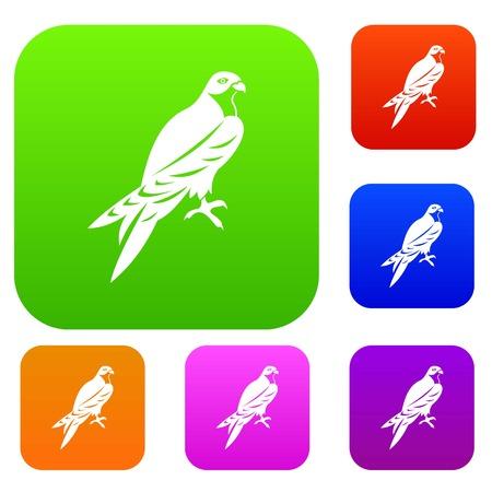 Falcon set collection