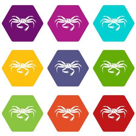 Crab seafood icon set color hexahedron