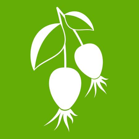 Dogrose berries branch icon white isolated on green background. Vector illustration