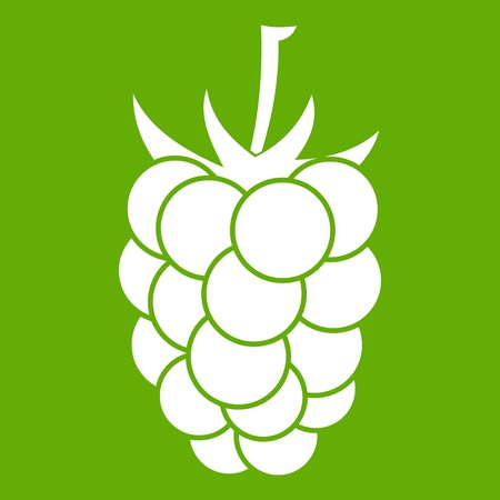 dewberry: Berry fruit icon white isolated on green background. Vector illustration