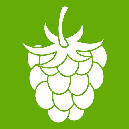 vegetal: Raspberry or blackberry icon green Illustration