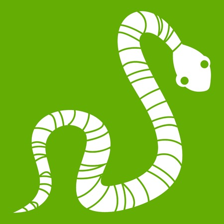 asp: Striped snake icon white isolated on green background. Vector illustration Illustration