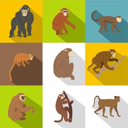 Jungle monkey icon set, flat style