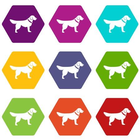 Dog icon set many color hexahedron isolated on white vector illustration Illustration