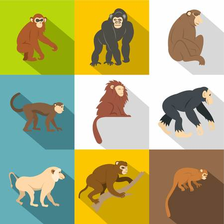 Different monkey icon set. Flat style set of 9 different monkey vector icons for web design Illustration