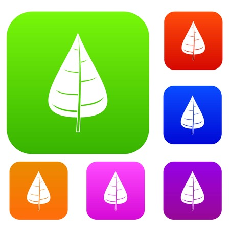 details: Poplar leaf set icon color in flat style isolated on white. Collection sings vector illustration Illustration