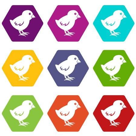 chick: Chick icon set color hexahedron