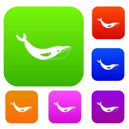 baleen whale: Whale set icon color in flat style isolated on white. Collection sings vector illustration