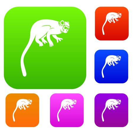 Marmoset monkey set icon color in flat style isolated on white. Collection sings vector illustration Illustration