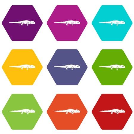 Set of multicolored iguana icon