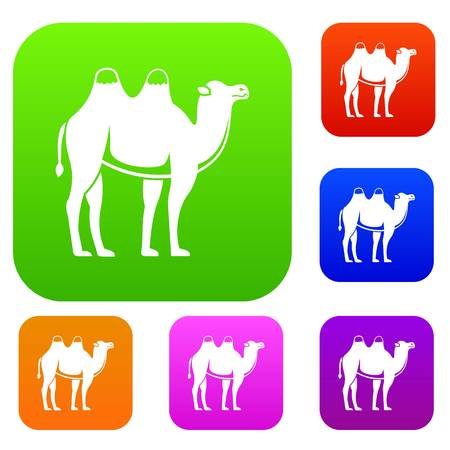 Camel set icon color in flat style isolated on white. Collection sings vector illustration