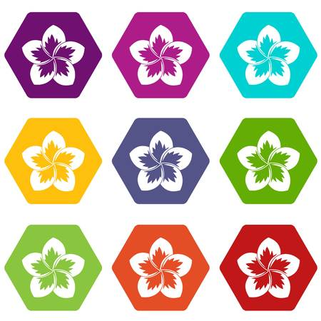 Frangipani flower icon set many color hexahedron isolated on white vector illustration Illustration