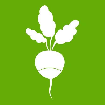 Fresh radish icon white isolated on green background. Vector illustration Illustration