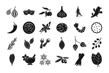 Spices icon set, simple style Illustration