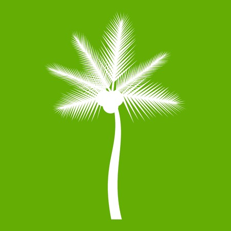 Palm butia capitata icon green Illustration