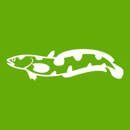 Anarhichas fish icon green Illustration