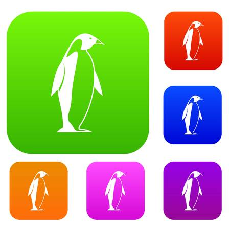 King penguin set color collection