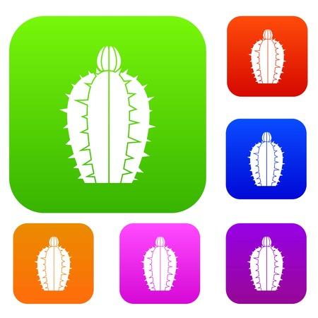 Blooming cactus set color collection Illustration