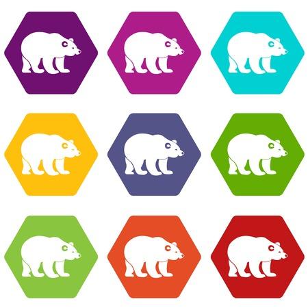 Bear icon set color hexahedron
